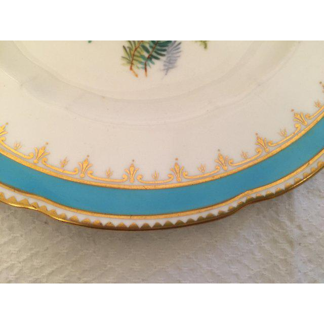 English Traditional 1930s English Traditional China Plate For Sale - Image 3 of 8