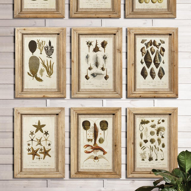 Rustic Framed Antibes Prints - Set of 9 For Sale - Image 3 of 5