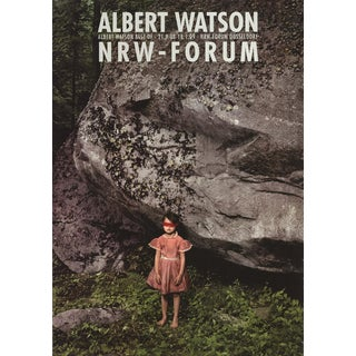 """Albert Watson Child 1 46.75"""" X 33"""" Poster 2008 Photography Gray, Green For Sale"""
