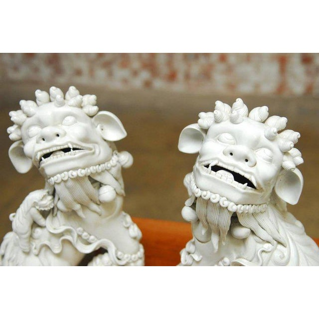 Pair of Chinese Dehua Blanc de Chine Foo Dogs For Sale - Image 4 of 10