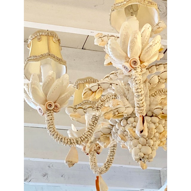 Metal Small Five-Light Shell Adorned Chandelier For Sale - Image 7 of 9
