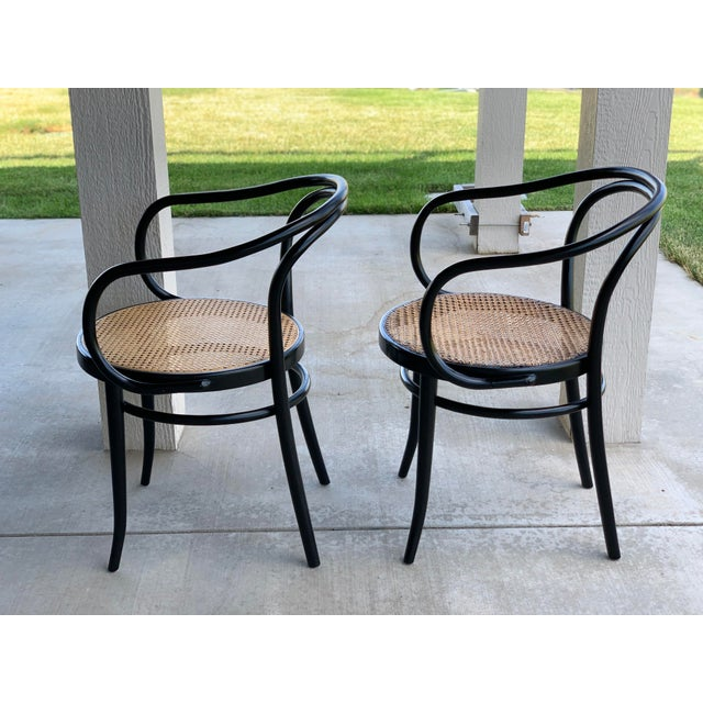 Thonet 1950s Vintage Stednig-Thonet Bentwood Cane Parlor Chairs -A Pair For Sale - Image 4 of 10