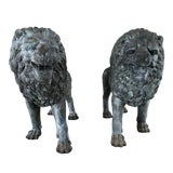 Image of Vintage Life-Size Bronze Lion Standing Sculptures - a Pair For Sale