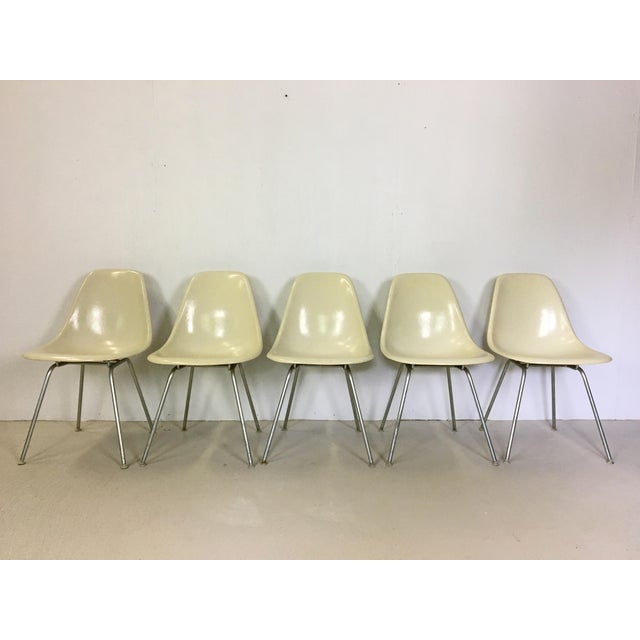 Great set of five cream colored, fiberglass Eames shell chairs for Herman Miller. One owner. Marked with Herman Miller...