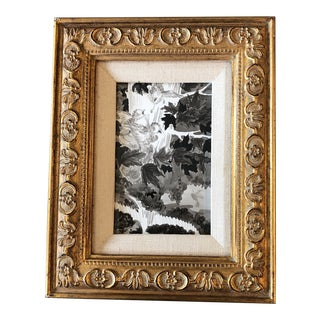 Original Vintage Small Bird Illustration Painting Ornate Frame For Sale