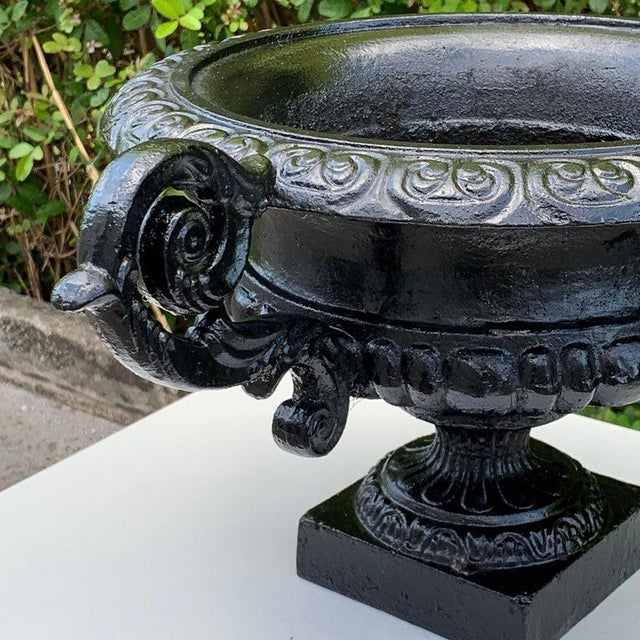 Pair of Handled Cast Iron Campana Garden Urns, in Black For Sale In West Palm - Image 6 of 8
