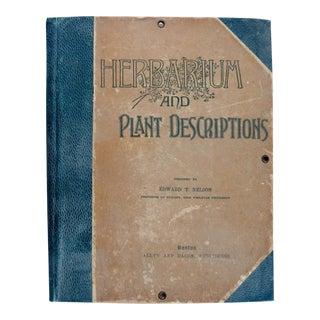 1890s Herbarium & Descriptions 50 Bound Botanical Samples For Sale