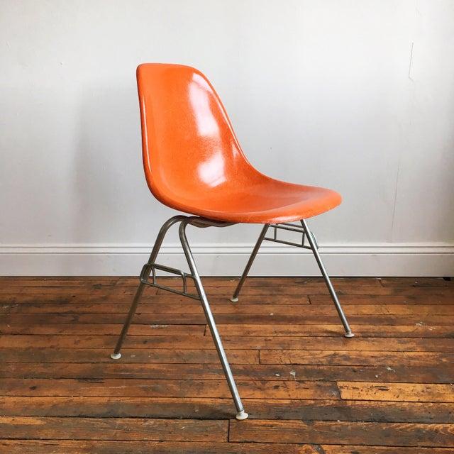 1960s 1960s Vintage Herman Miller Eames Orange Fiberglass Shell Chairs - Set of 4 For Sale - Image 5 of 11