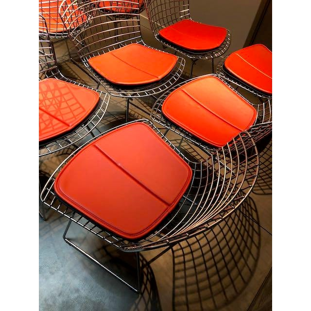 Chrome Knoll Bertoia Side Chairs - Set of 10 For Sale - Image 8 of 10