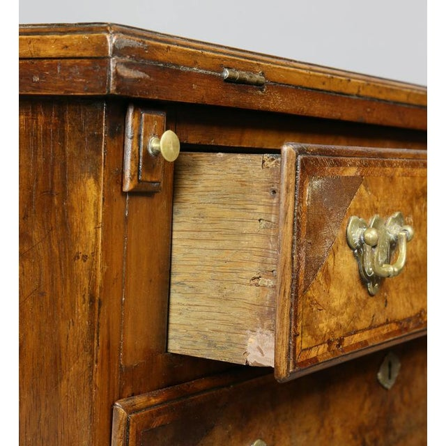 George II Style Burl Walnut Bachelors Chest For Sale In Boston - Image 6 of 11