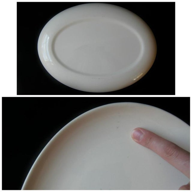 1960s Vintage Ever Yours Boutonniere Oval Large Serving Platter by Taylor, Smith and Taylor For Sale - Image 5 of 6