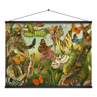 Butterfly Wall Hanging For Sale