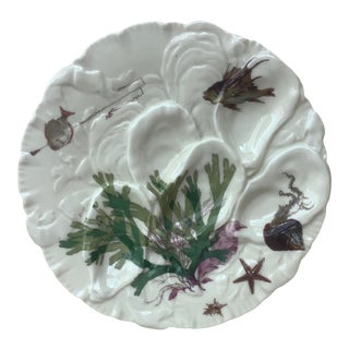 French Oyster Plate Porcelain Sealife Haviland Limoges For Sale