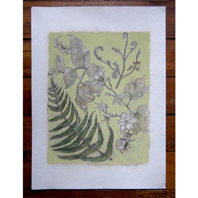 Detailed Natural History original botanical art. Contemporary art with old world qualities of craftsmanship, care and...