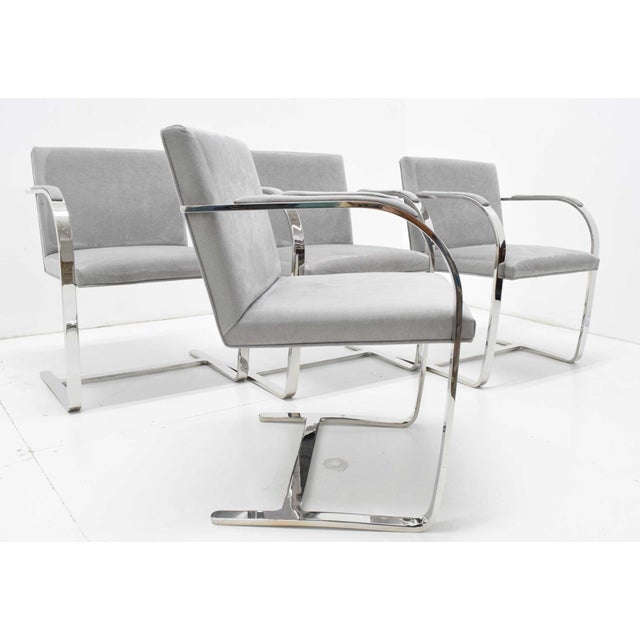 Gray Mies Van Der Rohe Gray Suede Brno Chairs - Set of 4 For Sale - Image 8 of 9