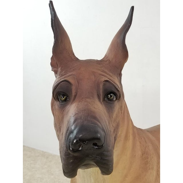 Great Dane Life Size Dog Statue For Sale - Image 10 of 11