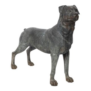 Mid 20th Century Bronze Statue of a Rottweiler For Sale
