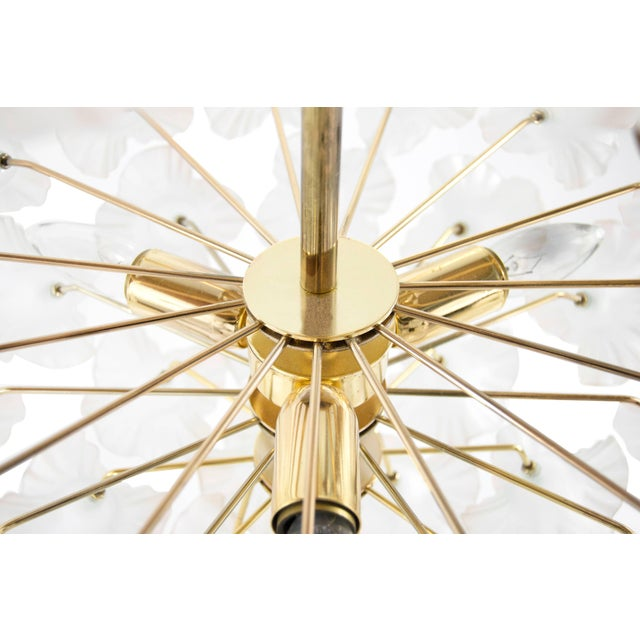 """Italy, 1950s Murano Glass and Brass """"Hibiscus"""" Chandelier For Sale - Image 9 of 10"""