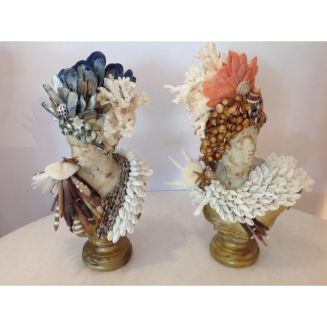 Apollo and Diane Shelled Busts - a Pair For Sale - Image 4 of 4