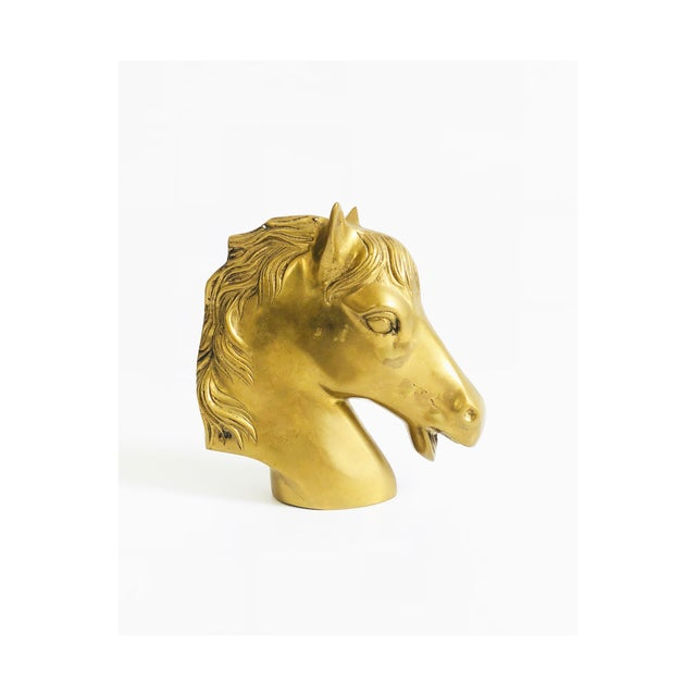 Metal Large Vintage Brass Horse Head For Sale - Image 7 of 7
