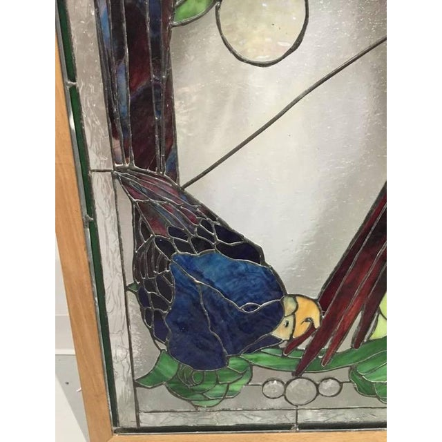 Stained Glass of Two Parrots in Wood Frame For Sale In New York - Image 6 of 10