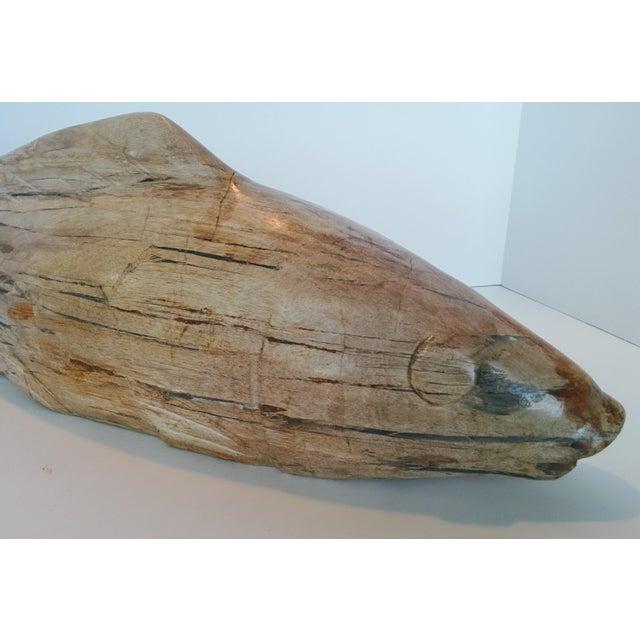 Tan Jumbo Petrified Wood Koi Fish Sculpture For Sale - Image 8 of 10