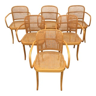 1930s Vintage Josef Hoffmann for Thonet 811 Bentwood Arm Chair- Set of 6 For Sale