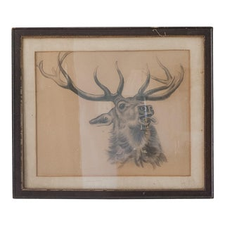 Antique Elk Charcoal Drawing