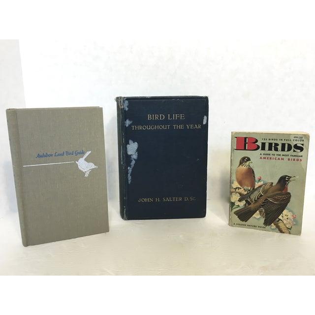 Vintage Ornithology Books - Set of 3 - Image 3 of 9
