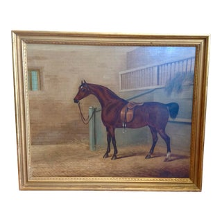 Early 19th Century English Study of a Horse For Sale