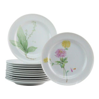 Mikasa Flower of the Month Dinner Plates - Set of 12 For Sale