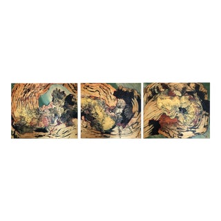 "2000 ""The Dynamics of Nature IV"" Paintings - Set of 3 For Sale"