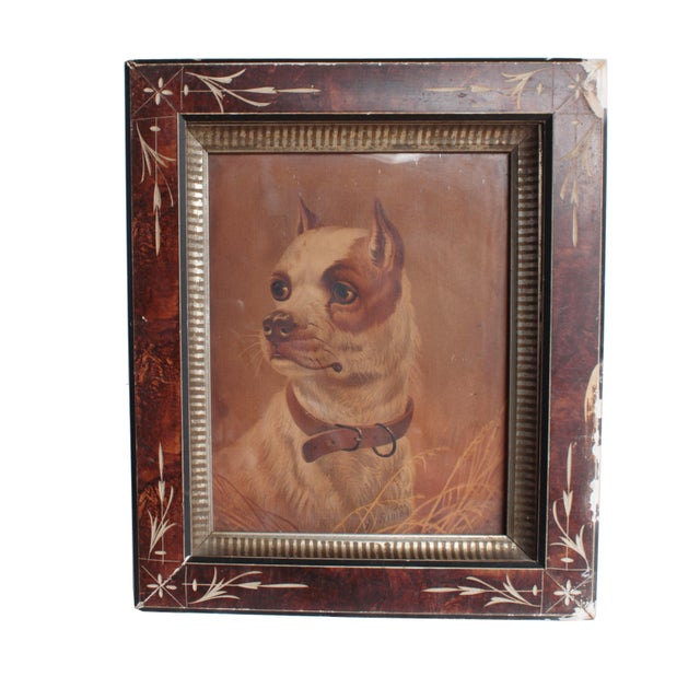 This fine portrait of a Staffordshire Terrier is beautifully framed. The reverse of the print has the following...