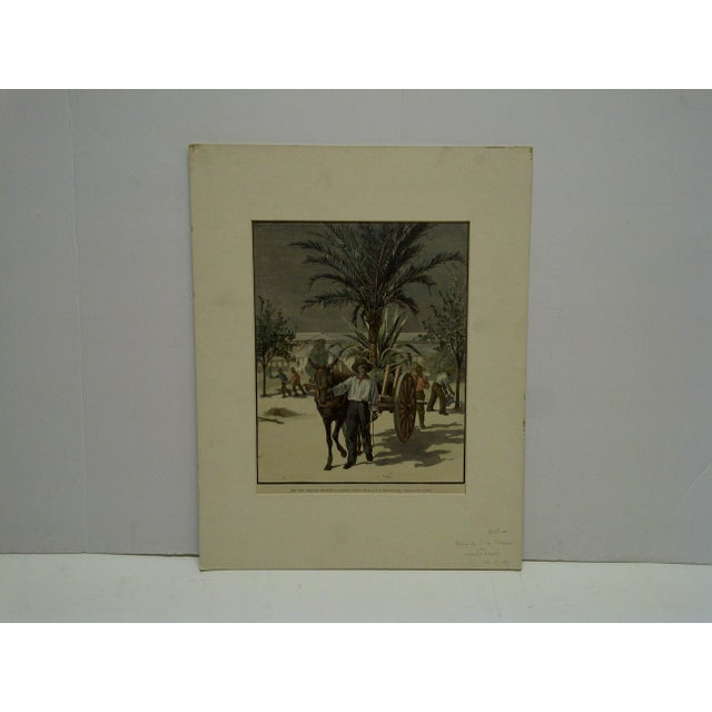 """Mid 20th Century Harper's Weekly """"The New Orleans Exposition, Planting Trees"""" Print by T. De Thulsrump For Sale - Image 5 of 5"""