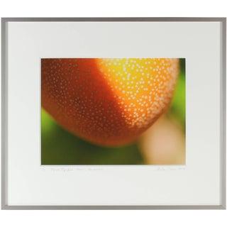 """Gaétan Caron """"Pyrus Pyrifolia Hosui"""" Asian Pear Color Photograph, 2012 For Sale"""
