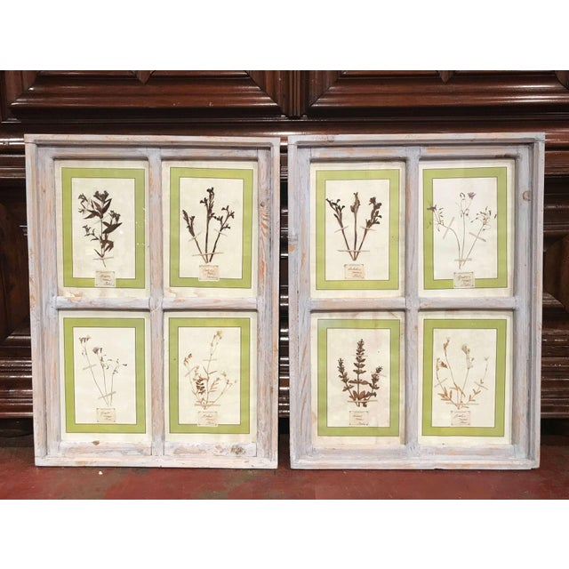Pair of 21st Century Italian Dried Botanical Flowers in Painted Frames For Sale - Image 11 of 11