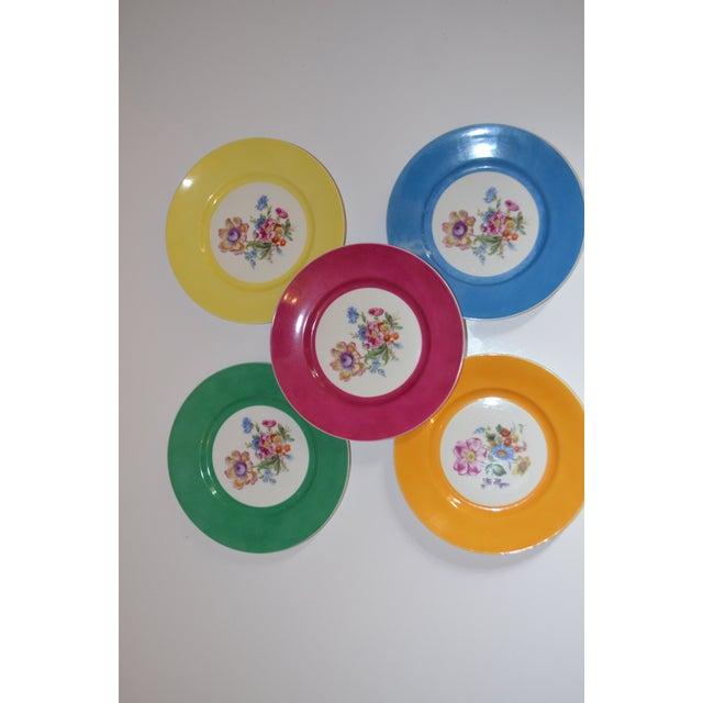 Pink Vintage Richard Ginori Italian Botanical Porcelain Plates - Set of 5 For Sale - Image 8 of 12