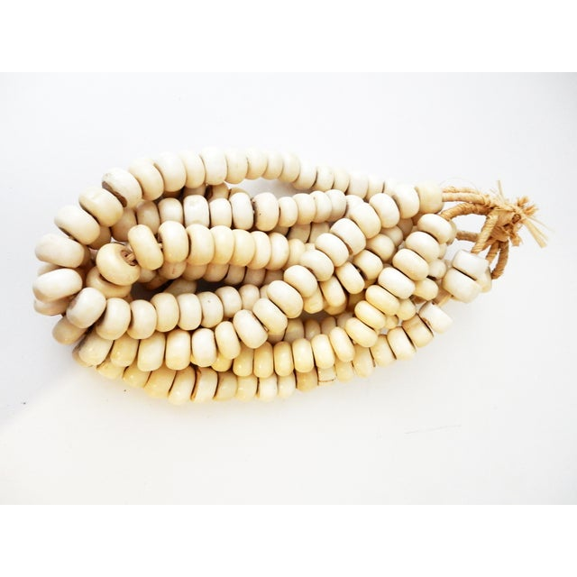 Currency Bone Trade Beads - Set of 5 - Image 2 of 7
