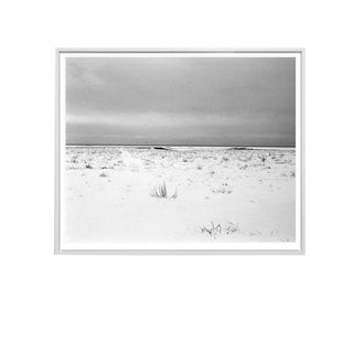 "Eden Batki ""Quiet Storm"" Unframed Photographic Print For Sale"