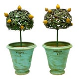 Image of Pair of 1960s French Tole Lemon Trees in Pots For Sale