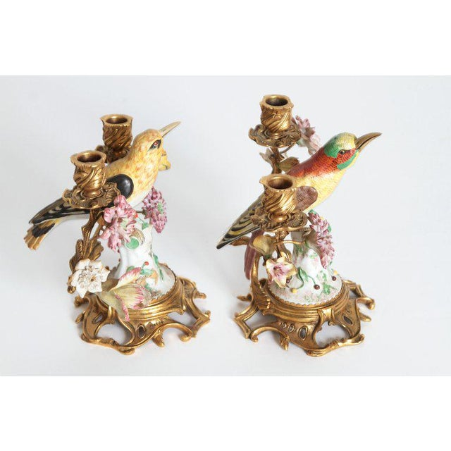 Italian Pair of Early 20th Century Italian Porcelain Birds Mounted as Candelabra For Sale - Image 3 of 13