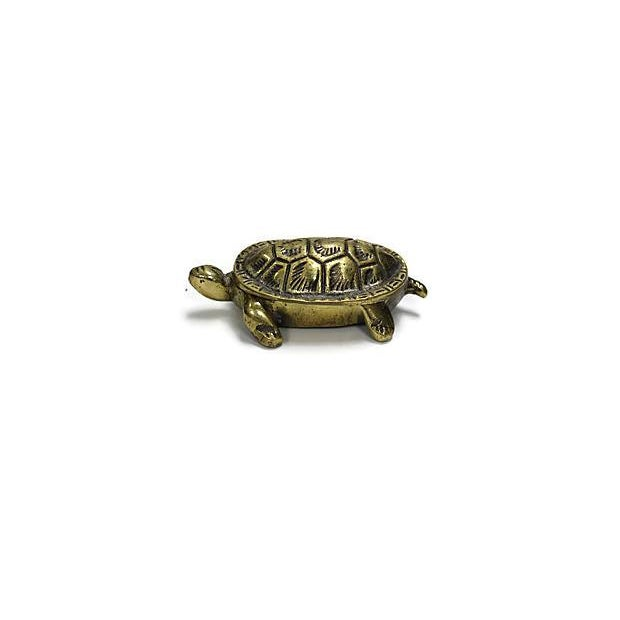 Antique English Brass Turtle Match Box For Sale - Image 4 of 4