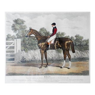 Hand Colored Equestrian Race Horse Aquatint C. 1840 For Sale