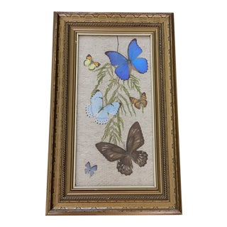 Midcentury Framed Pressed Butterflies Wall Decor For Sale