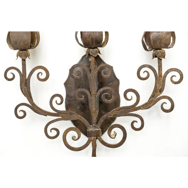 Metal Iron Tulip Candelabra Sconce For Sale - Image 7 of 8