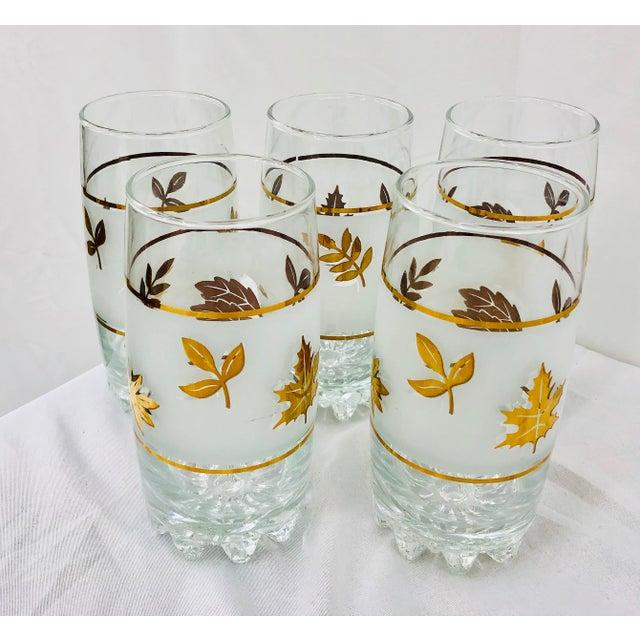 Fantastic Vintage Set of Five (5) Mid-Century Era Gold Leaf High Ball Tumbler Cocktail Glasses. Fun and retro! Original...