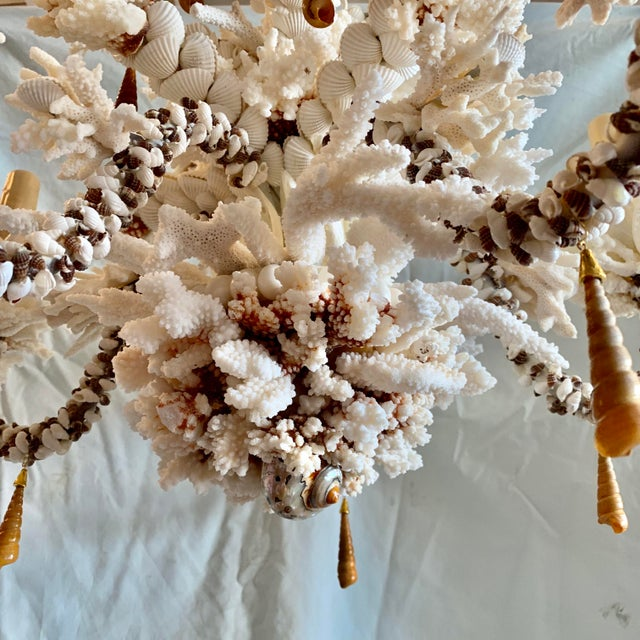 Contemporary Custom Shell Chandelier For Sale - Image 3 of 5