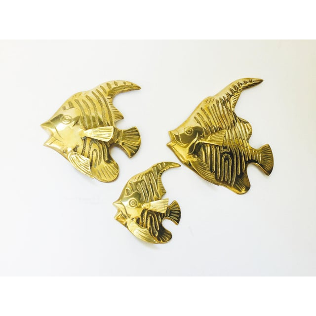 Vintage Brass Angel Fish Wall Hangings - Set of 3 For Sale - Image 5 of 6