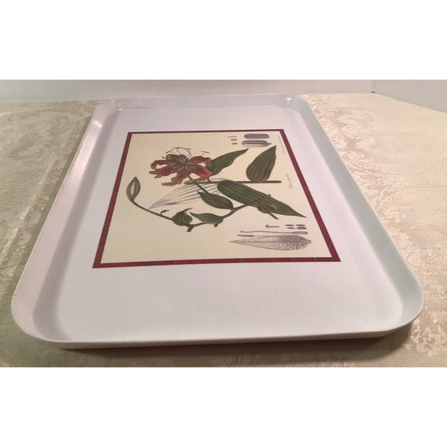 Plastic Vintage Royal Horticulture Society Collection Tray For Sale - Image 7 of 11