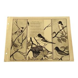 Baltimore Oriole 1930 Art Deco Print For Sale